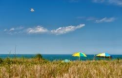 Free Summer At Martha S Vineyard Stock Photos - 29907943