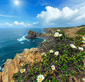 Summer Atlantic ocean sunshiny coastline Algarve, Portugal. Summer Atlantic ocean rocky sunshiny coastline scenery with bush of white flowers in front near Royalty Free Stock Photo