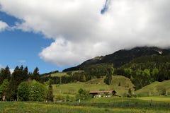 Summer Austrian Alps Royalty Free Stock Photo