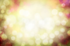Summer or autumn blurred nature bokeh background Stock Images