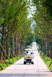 Summer Avenue. A electric power cart is going on the avenue stock image