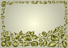 Frame of beautiful sea shells of different shapes on a golden background, elegant invitation card stock illustration
