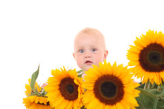 Summer baby girl Stock Images