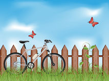 Summer background. With a bike Royalty Free Stock Images