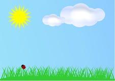 Summer background. Vector illustration of summer field Stock Image