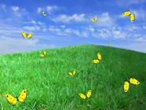 Summer background. The yellow drawn butterflies fly above green hills Stock Image