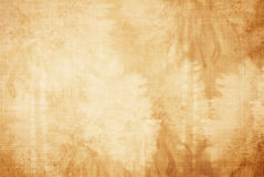 Free Summer Background Royalty Free Stock Photography - 5169577