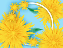 Summer background banner with beautiful flowers. Stock Image