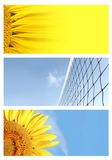 Summer Background Banners Stock Images