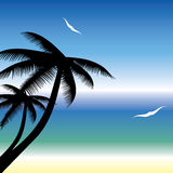 Summer Background . Stock Images