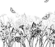 Summer background with Blooming wild flowers, daisies, cornflowers, grass, with butterflies. Vector. Royalty Free Stock Photo