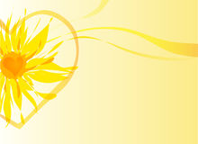 Summer background. With bright yellow flower royalty free illustration