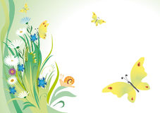 Summer background with butterflies Royalty Free Stock Image