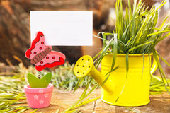 Summer background with butterfly holding banner. Wooden background with butterfly holding banner and decorativ watering can Royalty Free Stock Images