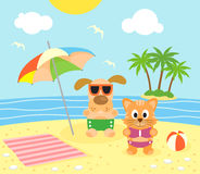 Summer background with cat and dog on the beach Stock Images