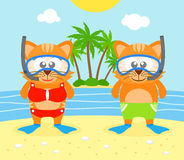 Summer  background with cat Royalty Free Stock Photography