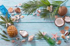 Summer background. With coconut and pineapple Royalty Free Stock Images