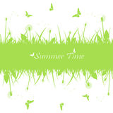 Summer background with dandelion Royalty Free Stock Photo