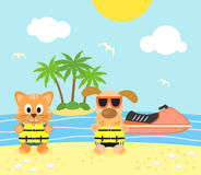Summer background with dog and cat on the beach Royalty Free Stock Images