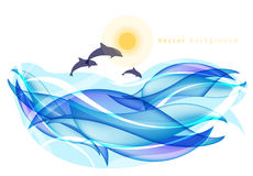 Summer background with dolphins