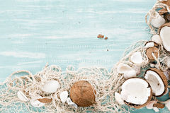Summer background with fishing net and coconuts. Royalty Free Stock Image