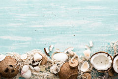 Summer background with fishing net and coconuts. Stock Photography