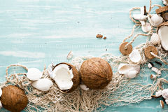 Summer background with fishing net and coconuts. Stock Image