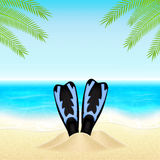 Summer background with Stock Photo