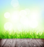 Summer background with floor, grass and bokeh Royalty Free Stock Image
