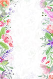 Summer Background With Floral Borders Stock Photos