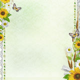 Summer background with flowers (1 of set) Stock Image