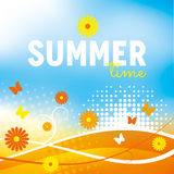 Summer Background with flowers Stock Photos