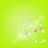 Summer background with flowers and butterflies. Royalty Free Stock Photos