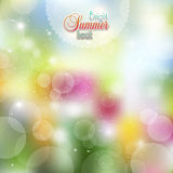 Summer background of flowers and herbs. Summer Sunny background of flowers stock illustration