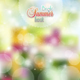 Summer background of flowers Stock Image