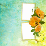 Summer background with frame and flowers Stock Photography