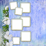 Summer background with frame and flowers Stock Photos