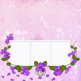 Summer background with frames Royalty Free Stock Photos