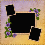 Summer background with frames and flowers Royalty Free Stock Photo