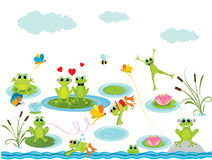 Summer background with frogs. Illustration Stock Photography