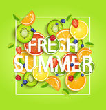 Summer background with fruits. Summer background with tropical fruits and berries, square frame and the lettering fresh summer. Vector illustration Royalty Free Stock Photos