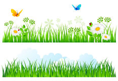 Summer background with grass. Vector illustration of Summer background with grass Stock Photos