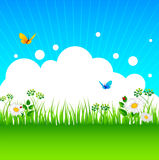 Summer background with grass Royalty Free Stock Image