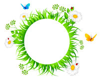 Summer background with grass Royalty Free Stock Images