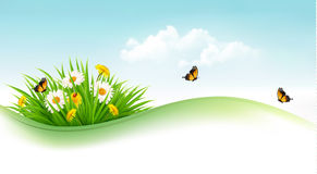 Summer background with grass, flowers and butterflies. Vector Royalty Free Stock Photos