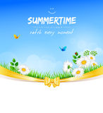 Summer background with grass Royalty Free Stock Photo