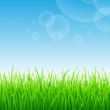 Summer background Royalty Free Stock Images