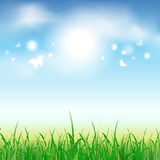 Summer background with green grass and butterflies. Vector illustration Royalty Free Stock Images
