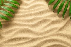 Summer Background with Green Palm Leaves. Beach texture. Copy space. Top view Royalty Free Stock Photo