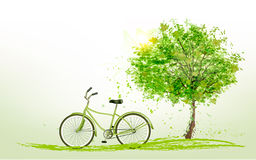 Summer background with a green tree and a bike. Royalty Free Stock Photography